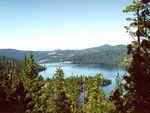 樱花湖与四周的森林