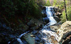Upper Creek-27527-4.jpg