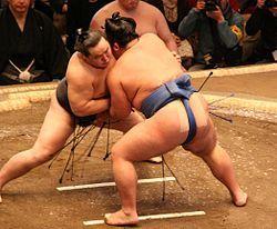 Asashoryu fight Jan08.JPG
