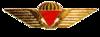 Danish Freefall Parachutist Badge.png