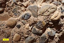 A brown-gray cobble conglomerate