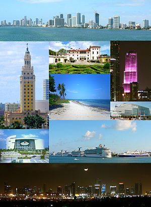 From top, left to right: Downtown, Freedom Tower, Villa Vizcaya, Miami Tower, Virginia Key Beach, Adrienne Arsht Center for the Performing Arts, American Airlines Arena, PortMiami, the Moon over Miami