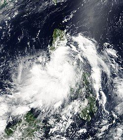 6月8日的热带风暴莎莉嘉