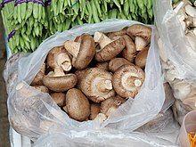 Shiitake mushroom in Vegetable store in Yuen Long.jpg