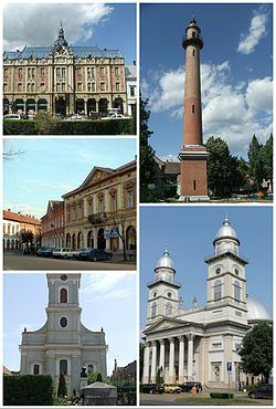 Left to right: Dacia Hotel, Firemen's Tower, Vécsey Palace (art museum), Chain Church, Roman Catholic Cathedral