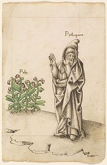 """Old manuscript illustration showing a cloaked and hooded man labelled """"Pythagoras"""" raising his arms and turning his face away from a fava bean plant, labelled """"Fabe."""""""