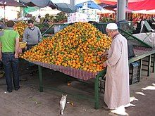 A stand with oranges, a man next to it, a cat on the floor