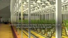 File:Science in Wales - a video by the Welsh Government.webm