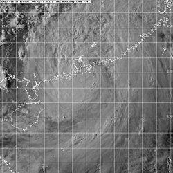 强热带风暴维克多