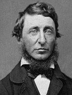 梭罗于1856年6月(39岁)