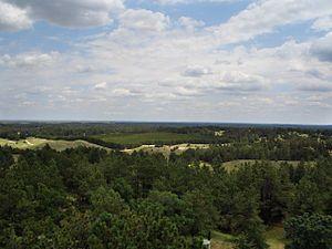 Nebraska National Forest, Bessey Ranger District, no. 5.jpg