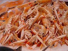 A heap of small pink lobsters on their sides, with their claws extended forwards towards the camera.