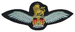 Army Air Corps brevet.jpg
