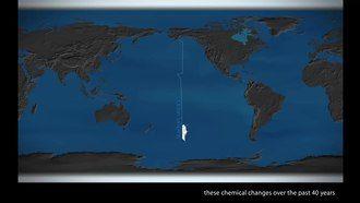 File:Impacts of ocean acidification (NOAA EVL).webm