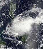 Higos 30 September 2008.jpg