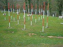 A grass field with 16 white-red-white-red poles spaced in diagonal lines, several plus-shaped stone blocks behind them, and a road is visible behind trees in the background