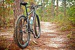 塔斯基吉国家森林中,停靠在步道旁侧的自行车
