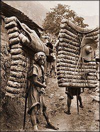 四川运茶人,1908年