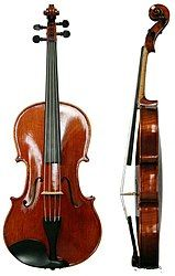 Viola shown from the front and the side
