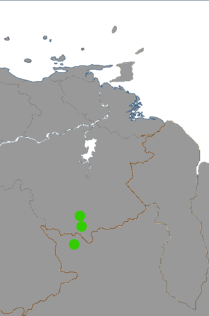 Arutani-Sape.png