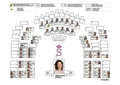 Senate of Belgium - current composition