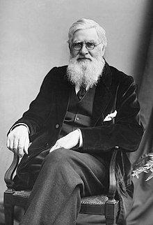 Alfred-Russel-Wallace-c1895.jpg