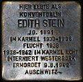 Stolperstein for Edith Stein.