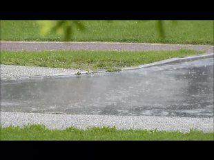 File:Averse de pluie.webm