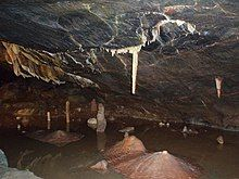 Dark brown cave interior with water. A white vertically hanging stalagmite shown above a brown mound on the cave floor.