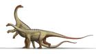 Saltasaurus loricatus