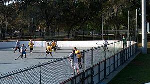 Organized Dek Hockey League.jpg