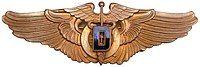 USAAF - Flight Surgeon Dentist.JPG