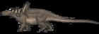 Sauropelta edwardsorum