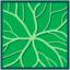 Leaf morphology rotate.png
