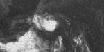 1966 Aug 21 Viola.png