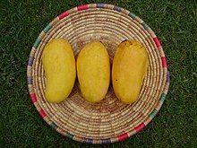 Sindhri mangoes is among top 10 mango varieties in the world