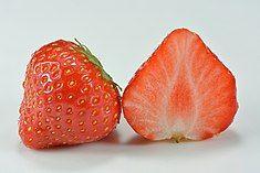 Garden strawberry (Fragaria × ananassa).jpg