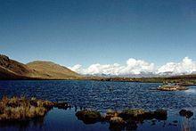 Laguna de Jarhuajara macho.jpg