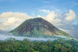 Karupina mountain in the Uaçá Indigenous Territory