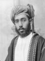 Taimur bin Feisal (cropped).png