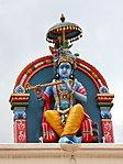 Krishnaup