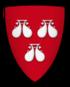Coat of arms of Robert de Roos, Lord of Hamlake Castle.png