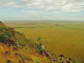 Extensas llanuras de vegetación sabanera.jpg