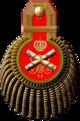 沙俄陆军元帅吊穗肩章