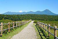 140829 Track Near Furepe Falls Shiretoko Hokkaido Japan00s3.jpg