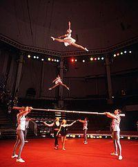 Evstafiev-circus-russian bar.jpg