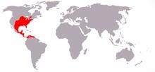 Florida-waldkaninchen-world.png