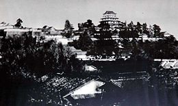 Tsuyama Castle old potograph.jpg