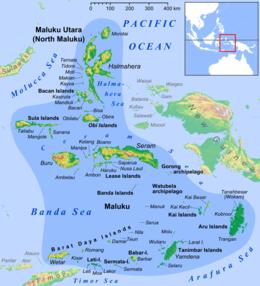 Maluku Islands en.png