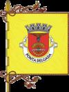 蓬塔德尔加达旗帜